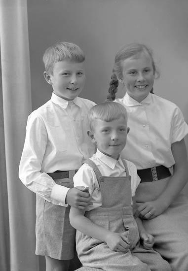 """Enligt fotografens journal nr 8 1951-1957: """"Berntsson, Helena, Göran o Lars Prästgården, Svanesund""""."""
