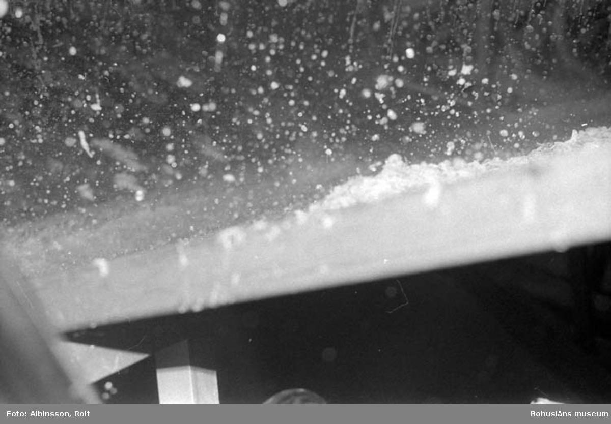 """Enligt fotografens noteringar: """"Här höll jag ner kameran med blixt under maskinerna och här ser man räkskalen falla ner. Räkskalen går sedan till en fiskmjölfabrik.  Hållöfisk betalar transporten, annars är det gratis. Tidigare gick skalen i sjön."""" Fototid: 1995-11-02."""