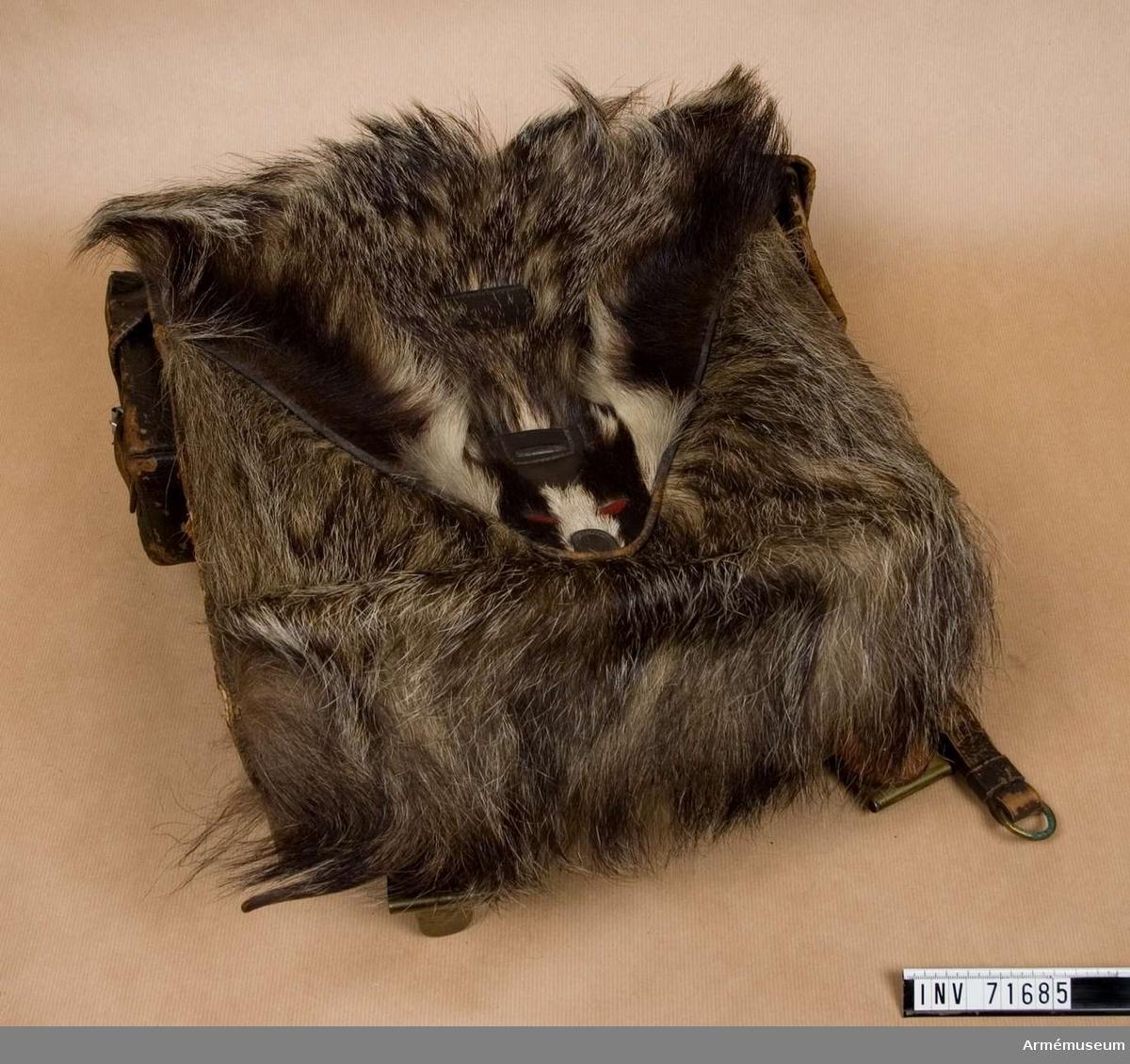 Grupp  C II.  Land Tyskland. Mått 37x35x13 cm. Regemente Jägare. Locket klätt med vildsvin eller annat långhårigt grått skinn. Locket är dekorativ gjort med en närmast grävlingsliknande nos och röda ögon.