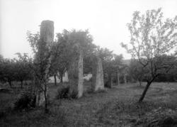 Juli 1924.