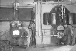 Eldare vid ångpannan Westkustens Olje & Guanofabrik 1949