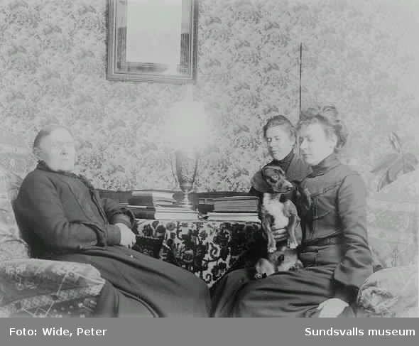 L P Hamrins förmak. Tre kvinnor och en hund, vid ett bord med böcker.