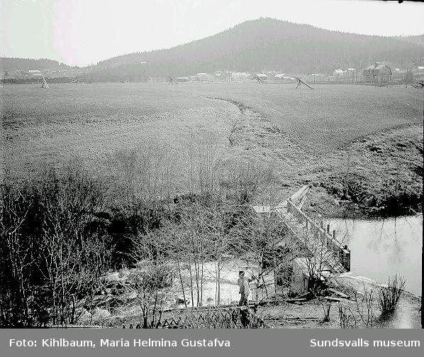 Landskap, damm och bro.