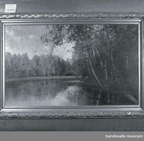 Landskapsmålning av Alfred Thörne. Tillhör Sundsvalls stad.