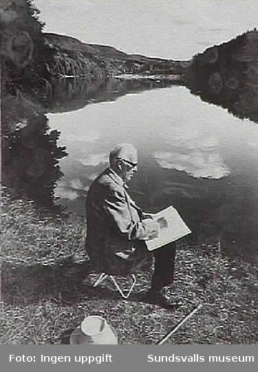 Porträtt på konstnären Gustaf Walles.