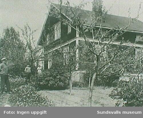 Familjen Pettersson bostad. Ferdinand Gäfvert,Halvar Gäfvert, och Hildur Pettersson.