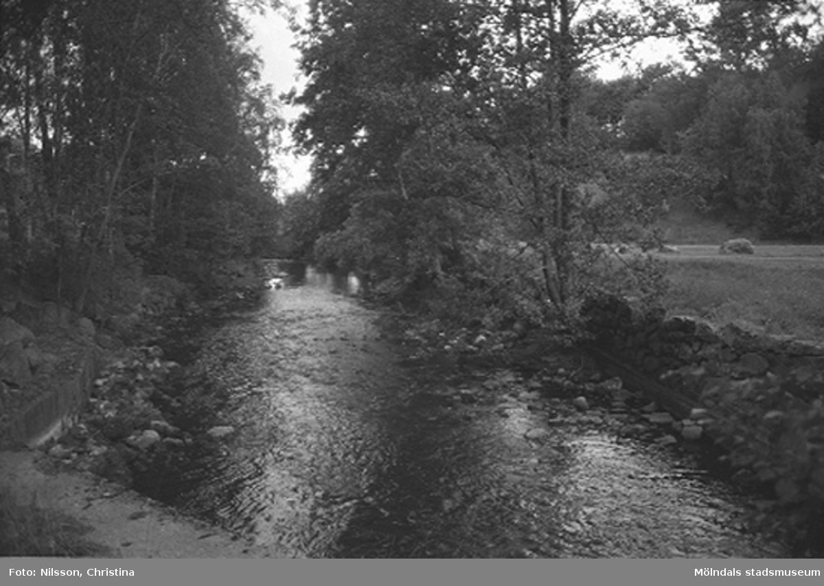 Vattendrag vid Grevedämmet, Kvarnfallet 31. Hösten 1994.