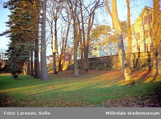 Vy från Rudströmska Villan. Huset närmast i bild, på andra sidan muren, ligger på Norra Forsåkersgatan 37. Papyrusinventeringen 2001-11-20.