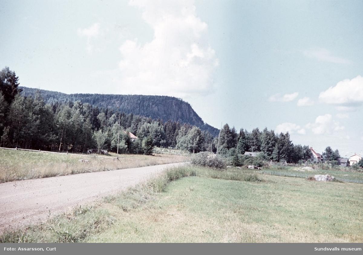 Ranklevens olika profil från olika håll, Bergsjö.