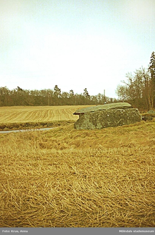 Dvärred - hällkistan.
