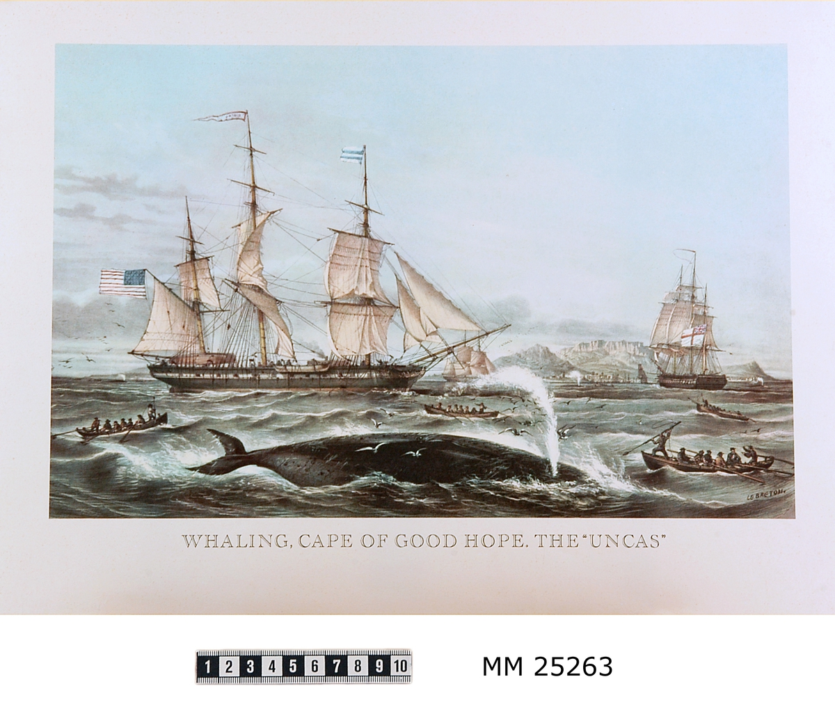 """Färgtryck på papper som visar valjakt vid Godahoppsudden. I förgrunden en val som blåser ut luft och dyker. Runt valen män i små roddbätar med harpunerare i fören. I bakgrunden tre större segelfartyg, ett med amerikansk flagg, ett med brittisk dito och det tredje oidentifierat. Bakom segelfartygen syns klippor vid Sydafrikas kust. Text under motivet: Whaling, Cape of Good Hope. The 'Uncas'."""" Signerad i nedre högra hörnet """"LEBRETON""""."""