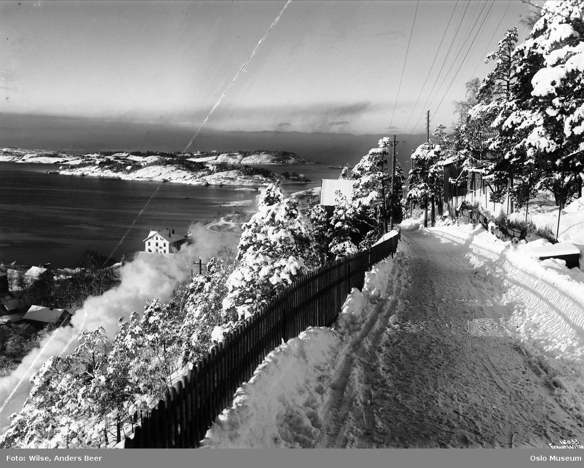vei, gjerde, snø, villaer, utsikt, fjord, øyer, vinterstemning