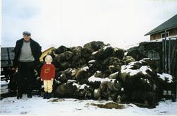Knut Skolt med oldebarnet Ingvild Skolt i 1995 på garden Sør