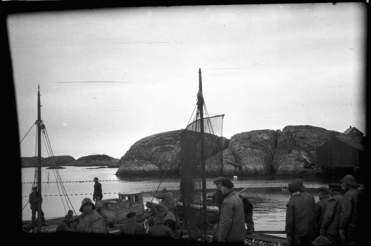 """Sildesteng på """"Stråka"""" , Landøy i Værlandet"""
