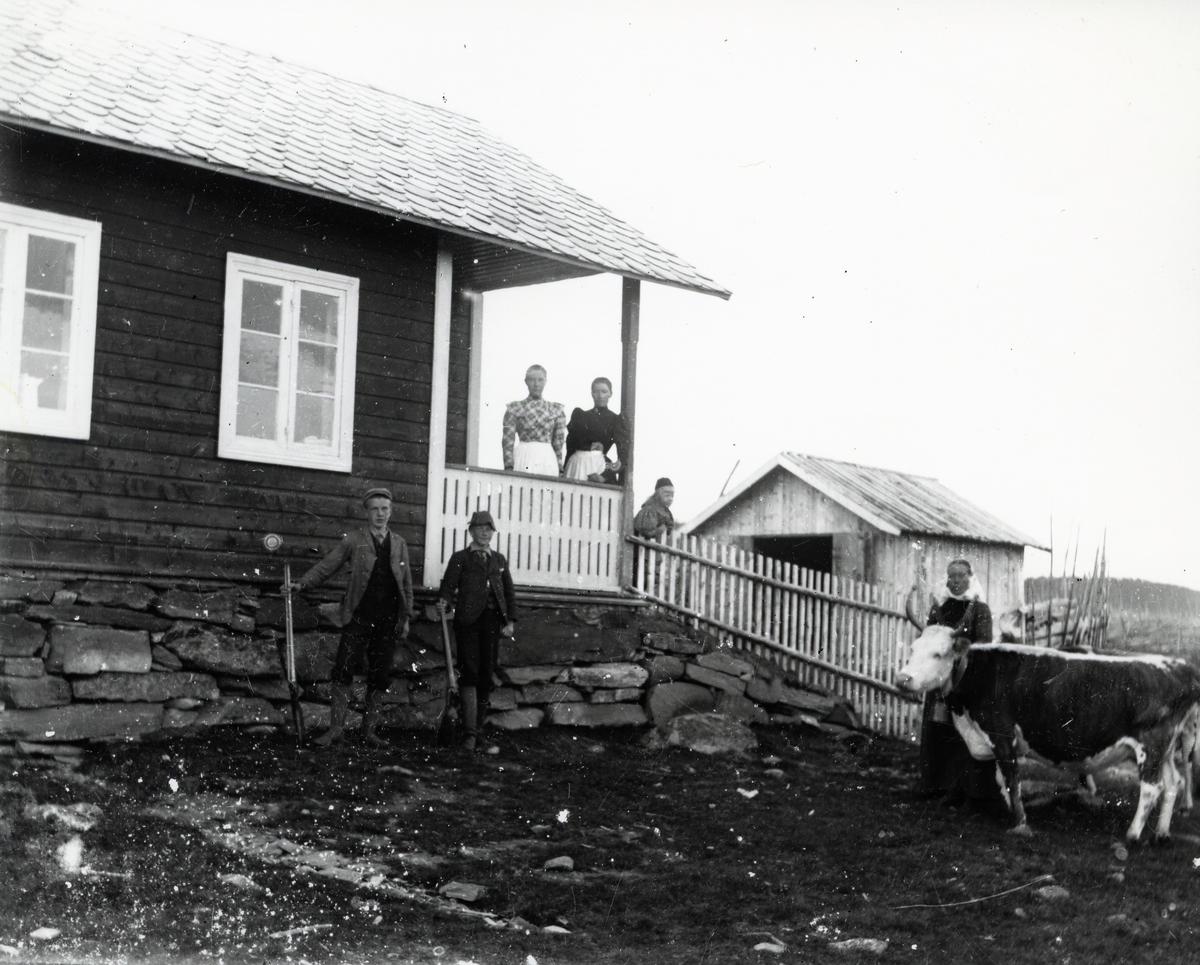Mennesker og kyr utenfor hus, antagelig på støl