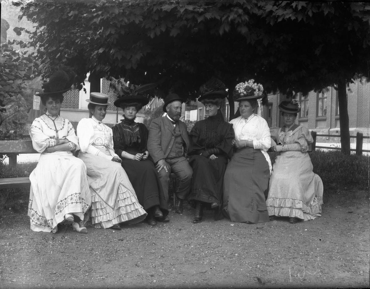 Seks kvinner og en mann på benk under lønnetre i parken