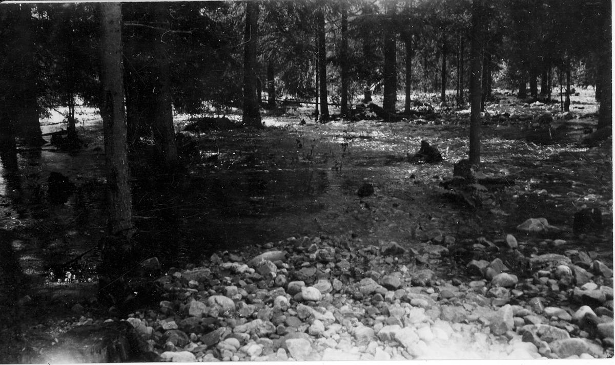 Oversvømmet ø ved Rauland Austbygde, 1927