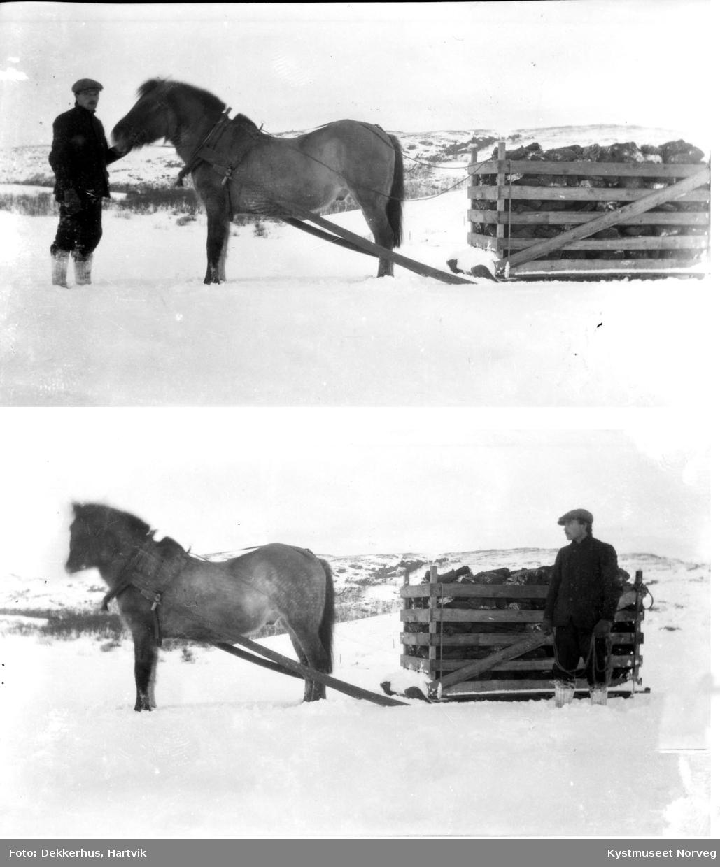Vikna kommune, frakting av torv på Dekkerhus