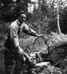 Skogsförvaltningen, diverse. En okänd man.