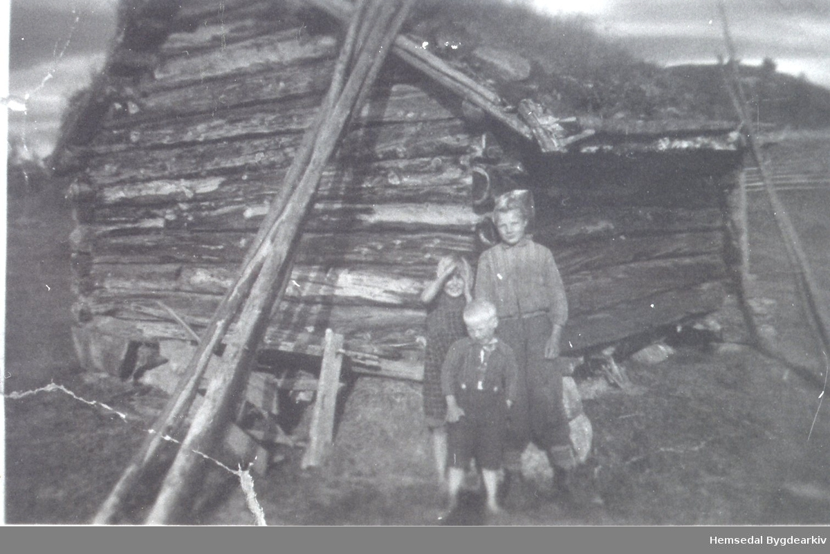 Fremst: Hans og Kari Borge. Bak>: Birger Ålrust