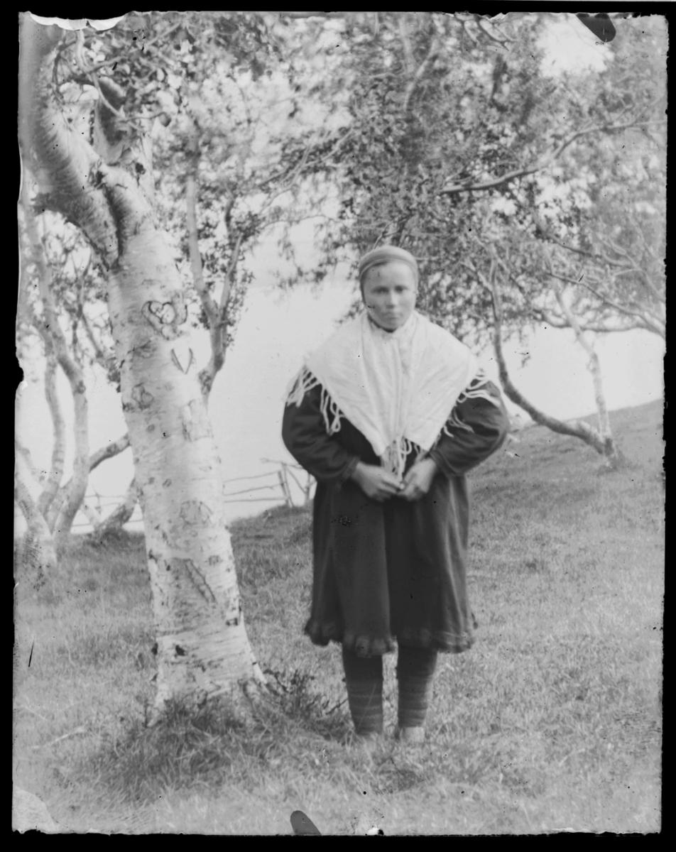 Ukjent samisk kvinne fotografert ved bjørketre med hjerte i barken