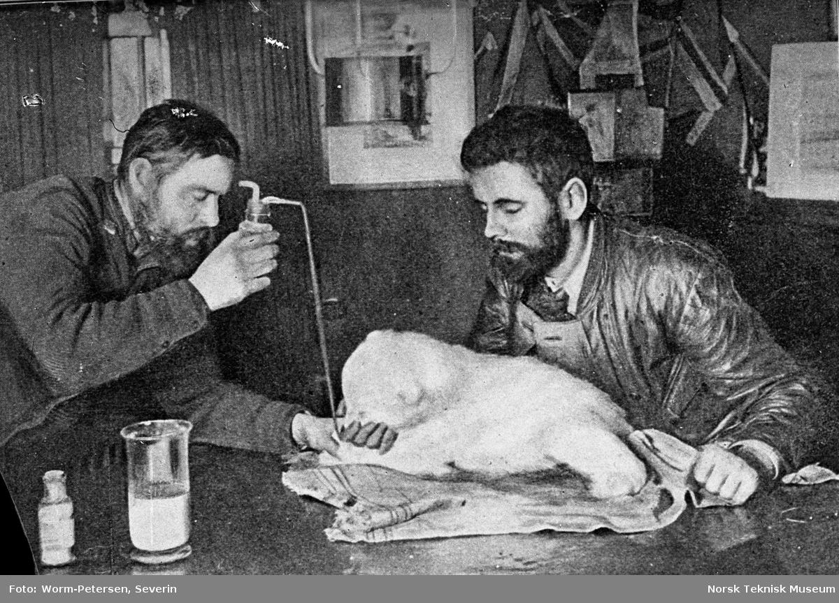 To menn som forer en isbjørnunge
