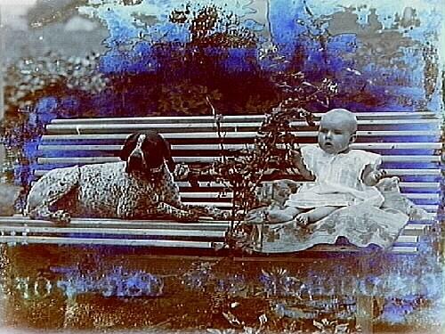 En liten flicka och en hund på trädgårdssoffan.Hugo Lundin