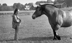 Bonde, 21 september 1974