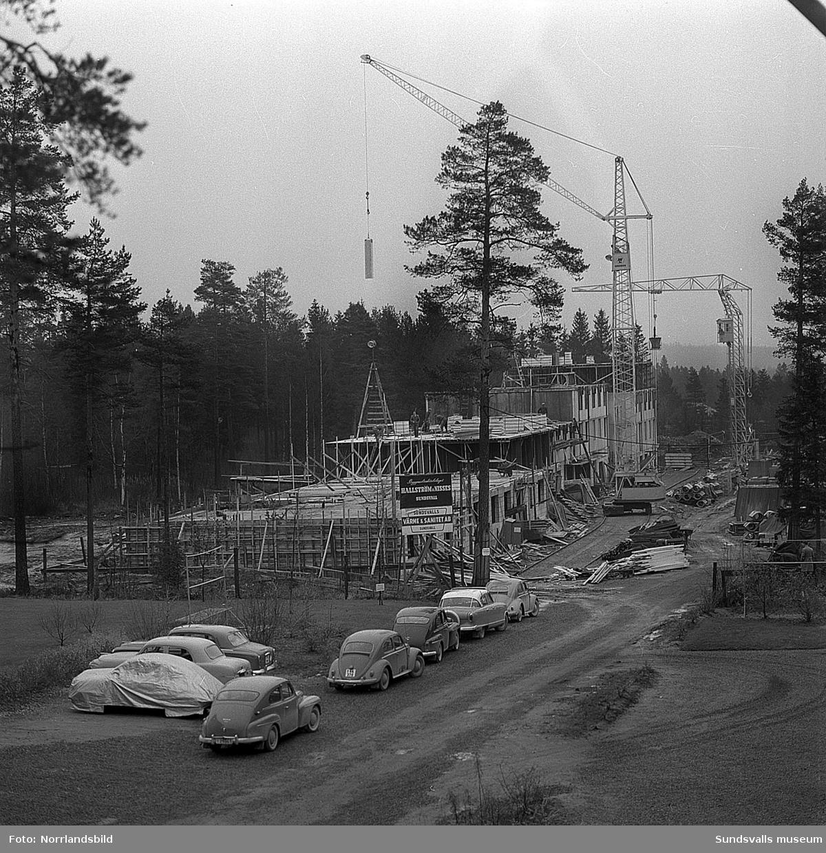 Bygge av flerfamiljshus vid Tallrotsgatan i Haga.