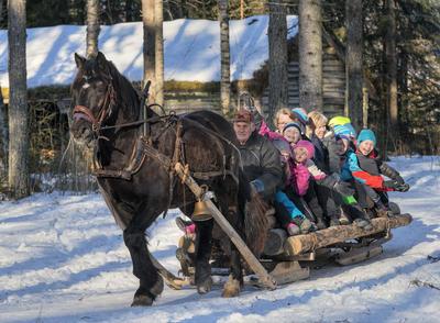 Michael Bølla kjører hest med skoleelever under temadagen fra stubben til tømmervelta 15/2 2016