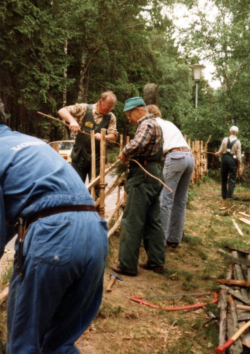 """Halmstad, Hallandsgården. Evenemang 24/5 1981. Kursen """"Slå gärdsgård på gammalt sätt"""" under ledning av Rolf Lindell."""