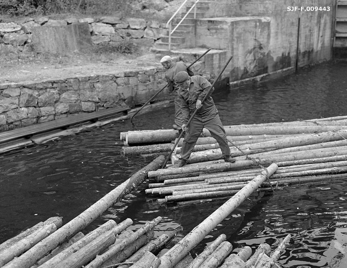 Tømmerfløterne Petter Dammyr (1924-2010) og Einar Melby (1915-2003) i arbeid i kanalen nedenfor Brekke sluser i tidligere Berg herred, nåværende Halden kommune, i Østfold.  Begge sto på en flytende bunt med ubarket massevirke av gran, som de ved hjelp av fløterhakene forsøkte å vende på slik at den ble liggende i flukt med bunten foran.  Der hadde karene trukket ut to stokker som skulle smyges under det fremste vaierbindet på de bakenforliggende bunten og festes der ved hjelp av kramper som ble slått over vaieren og ned i stokkene.  Dette var arbeid som måtte gjøres før ei lenke av tømmerbunter kunne slepes utover Brekkeelva til Ganerød ved Femsjøen, der flere lenker ble bundet sammen til større slep.  En liten historikk om tømmerfløting og kanaliseringsarbeid i Haldenvassdraget finnes under fanen «Opplysninger».