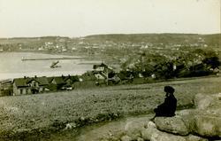Oversiktsbilde fra Moss og Værlebukta. Utsikt fra Teglverksj