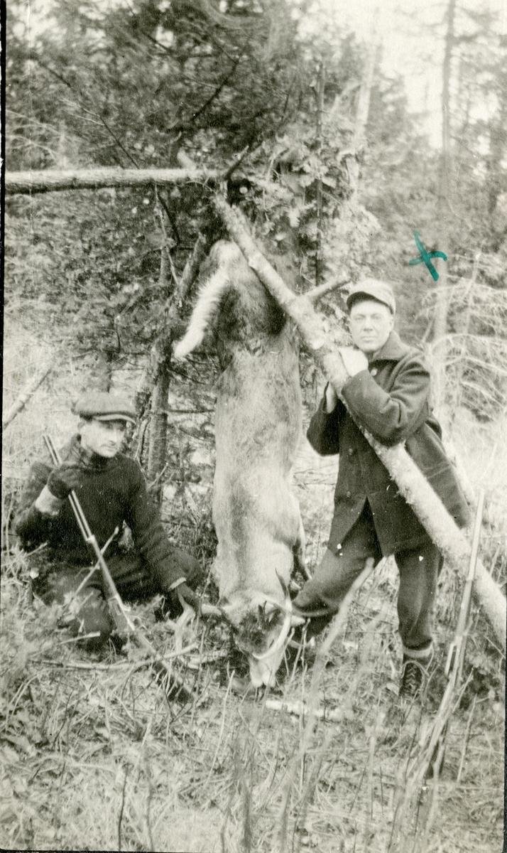 Haldor Knatvold til høyre og en jaktkamerat avbildet med en bukk de har felt. I Amerika.