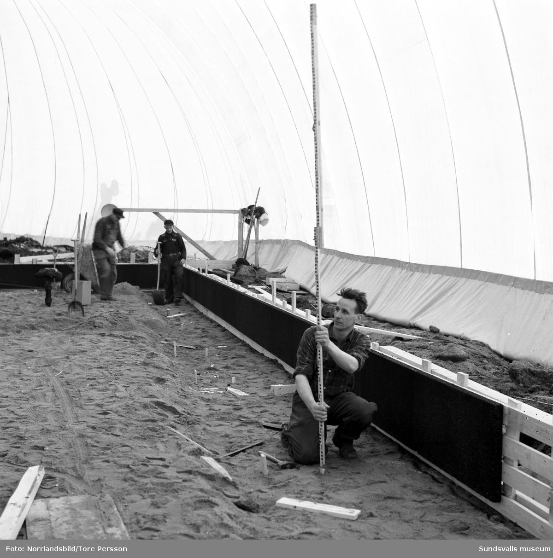 Husbygge i Granlo vid Vikingavägen-Höderbacken. Ett stort tält är uppställt och innanför tältväggarna pågår markarbetena för fullt.