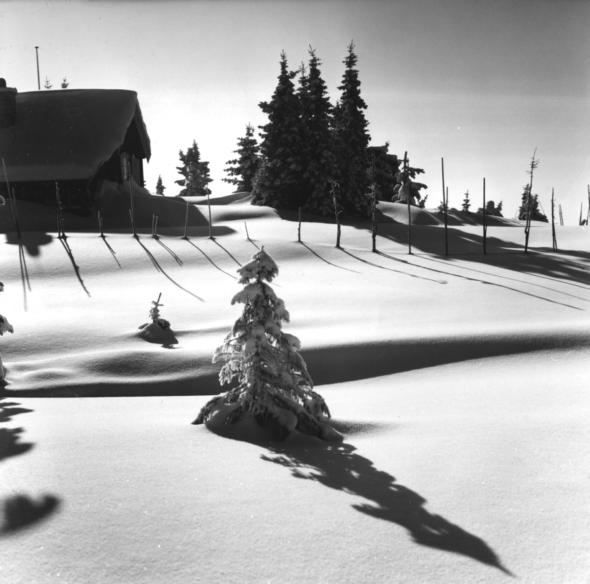 Hytte i snø