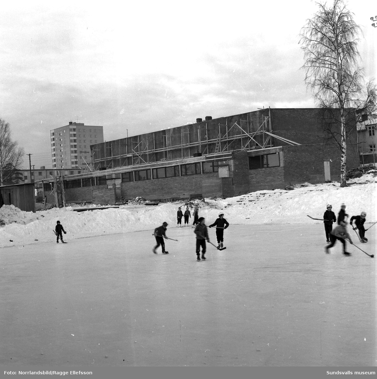 Skönsbergs skola (Hellbergsskolan) där det byggs för fullt. På första och andra bilden skridskobanan och bygget av gymnastiksalen. Tredje bilden är tagen från höghuset, över kvarteret Vasa som ännu inte är färdigbyggt, och vidare mot skolan med Ortvikens pappersbruk i bakgrunden.