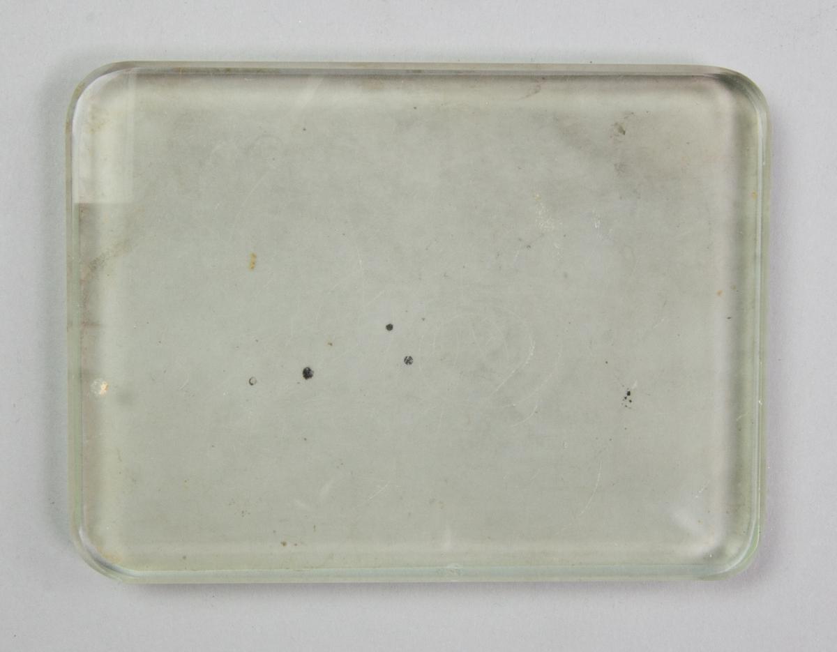Glasskiva, rektangulär med rundade hörn. En sida mattslipad.
