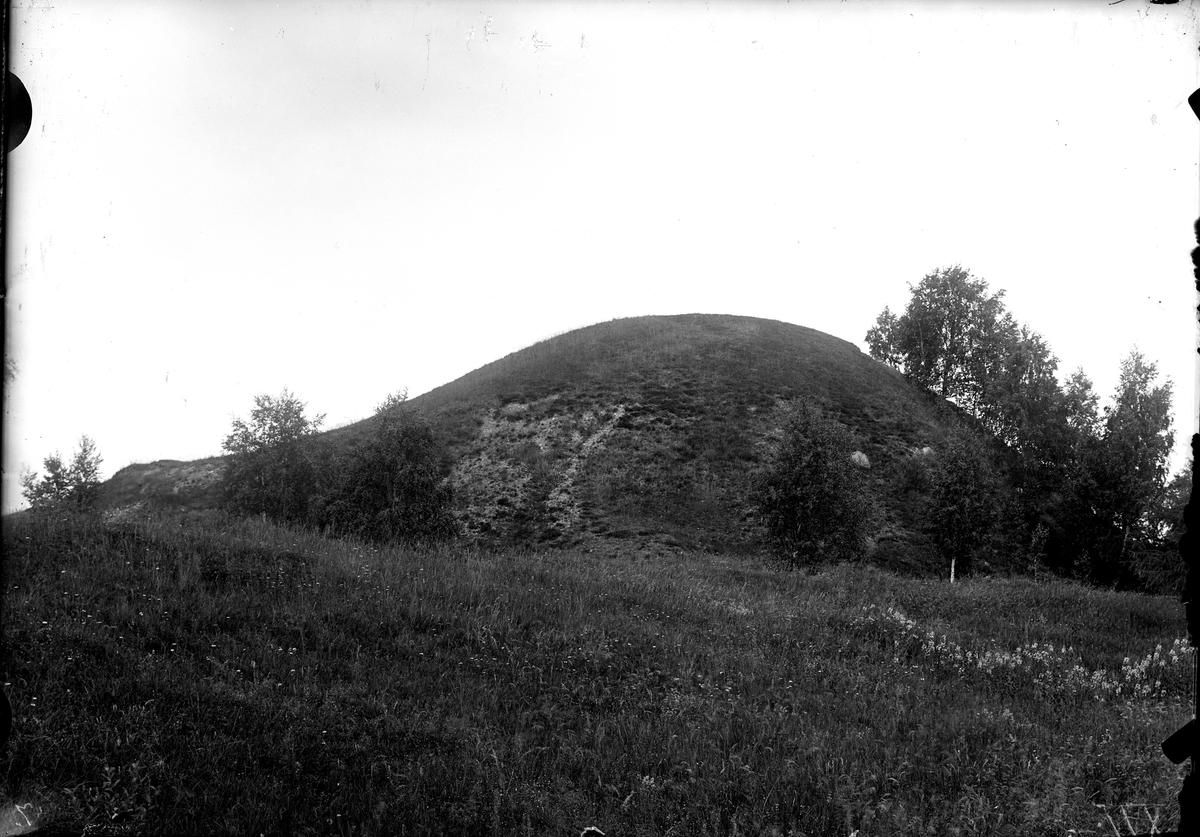 Ströbohög 1924.