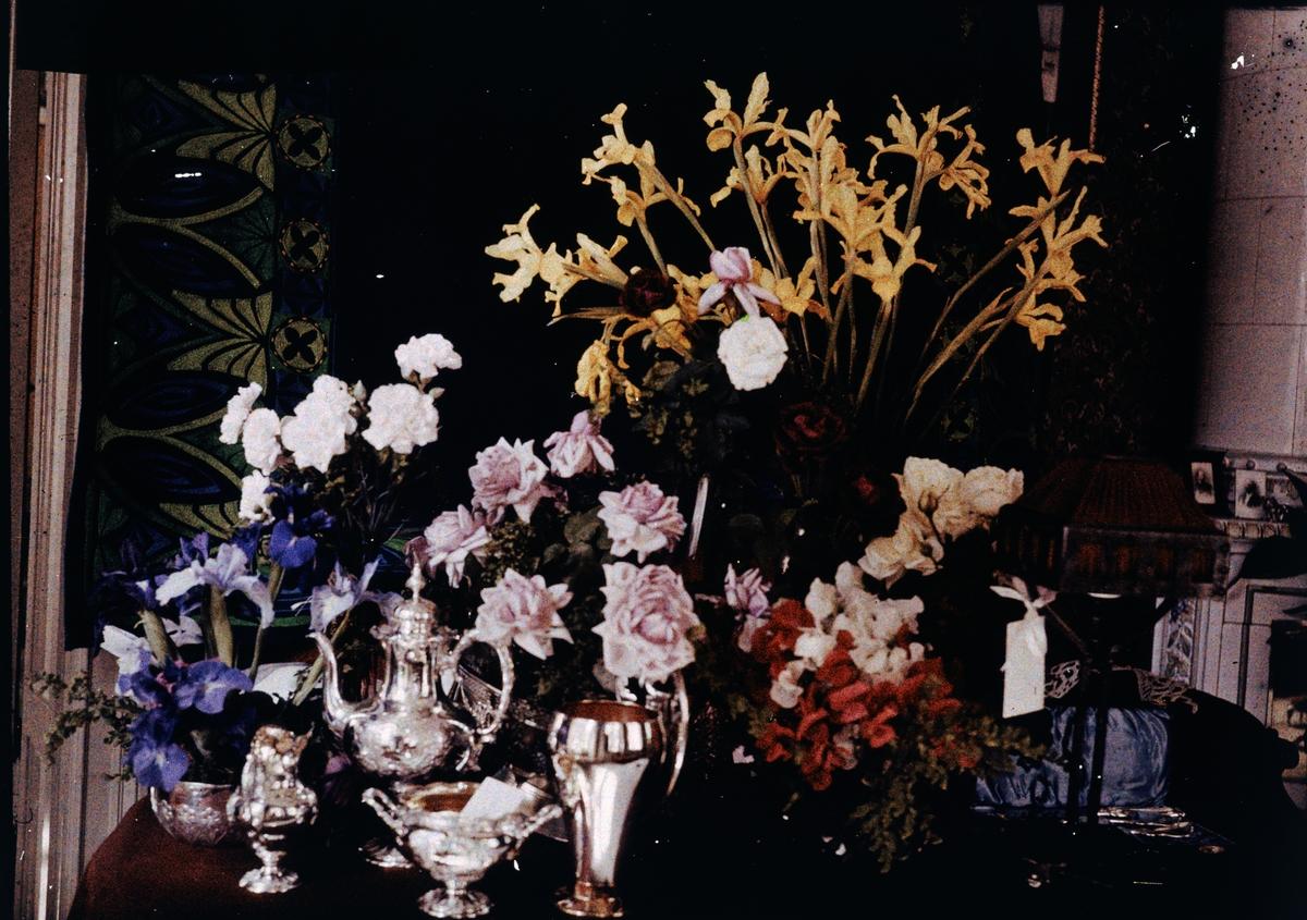 Lumières-autokrom. Blommor m m. på John Jäderströms 50-årsdag i juli 1911.
