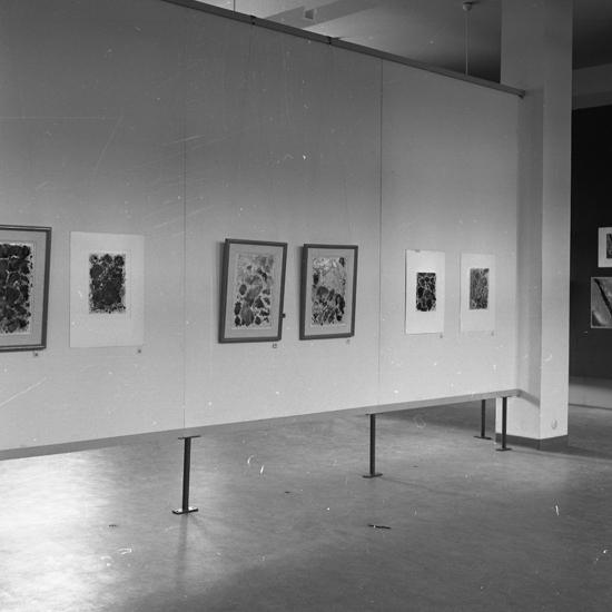 Konstutställning på Smålands museum.