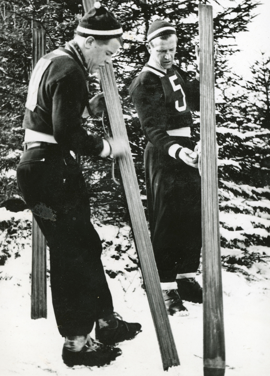 Brothers in skis