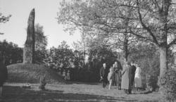Foto av en kransnedlägggning på G.O. Hyltén - Cavallius' gra