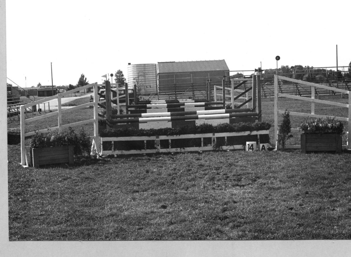 Modern Femkamp VM, Jönköping. Hästhoppshinder.