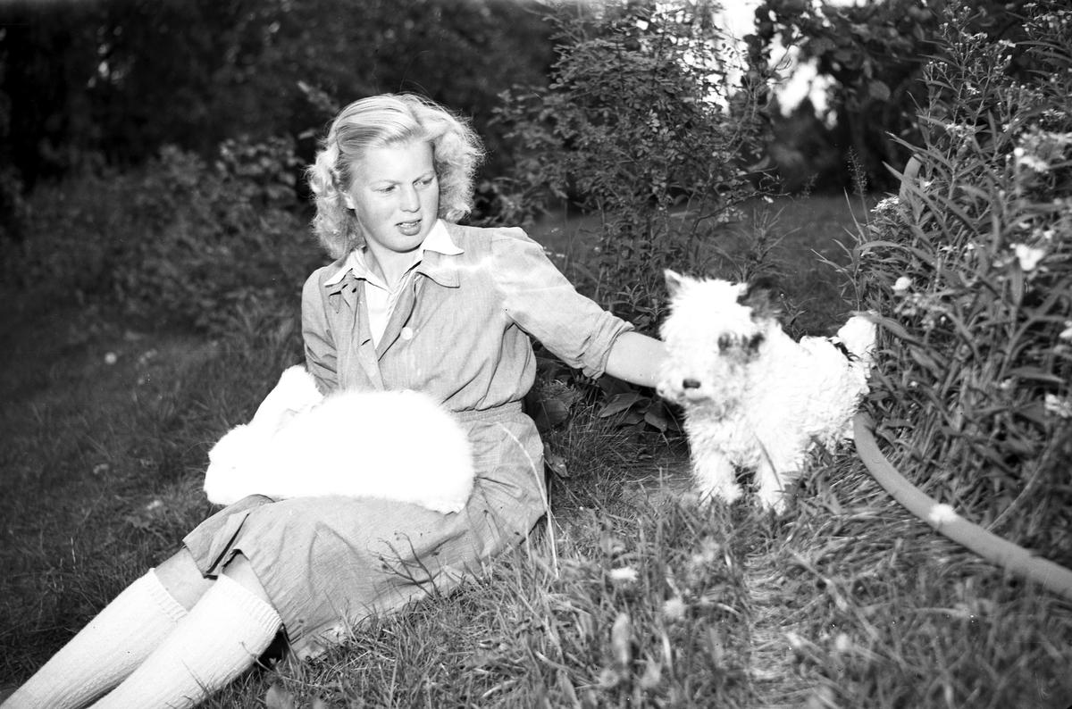 Husmodern Tidning. Kaninindustri i Valbo. Den 6 September 1941 Angoraspinneri, Kristinelund. Södra Valbo