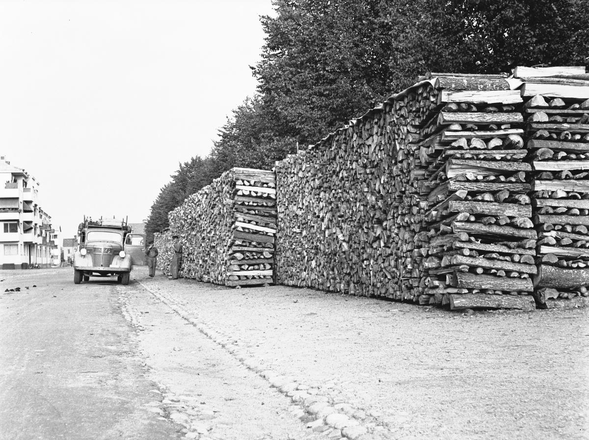 Vedtravar 1941
