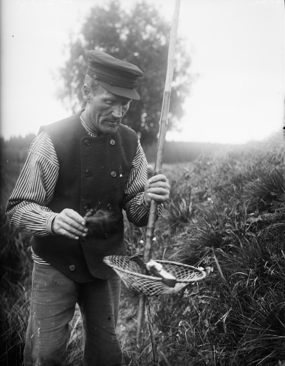 """August Alinder från Sävasta """"börjar fångsten"""", Altuna socken, Uppland 1921"""