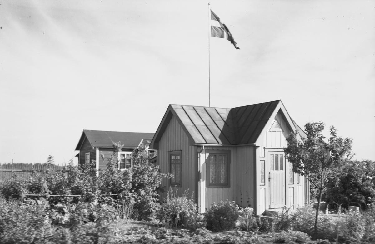 """Koloniträdgårdsföreningen firar 25 år. Föreningen bildades i Gävle 1905 och fick arrendera Vreten 171 i Sörby. Fick bygga """"lusthus"""" med högst tolv kvadratmeter, tre meter höga från takstolen till marken."""