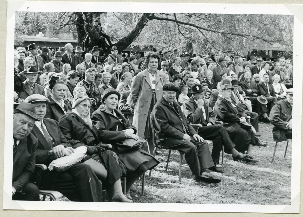 Publikum rundt domarringen.