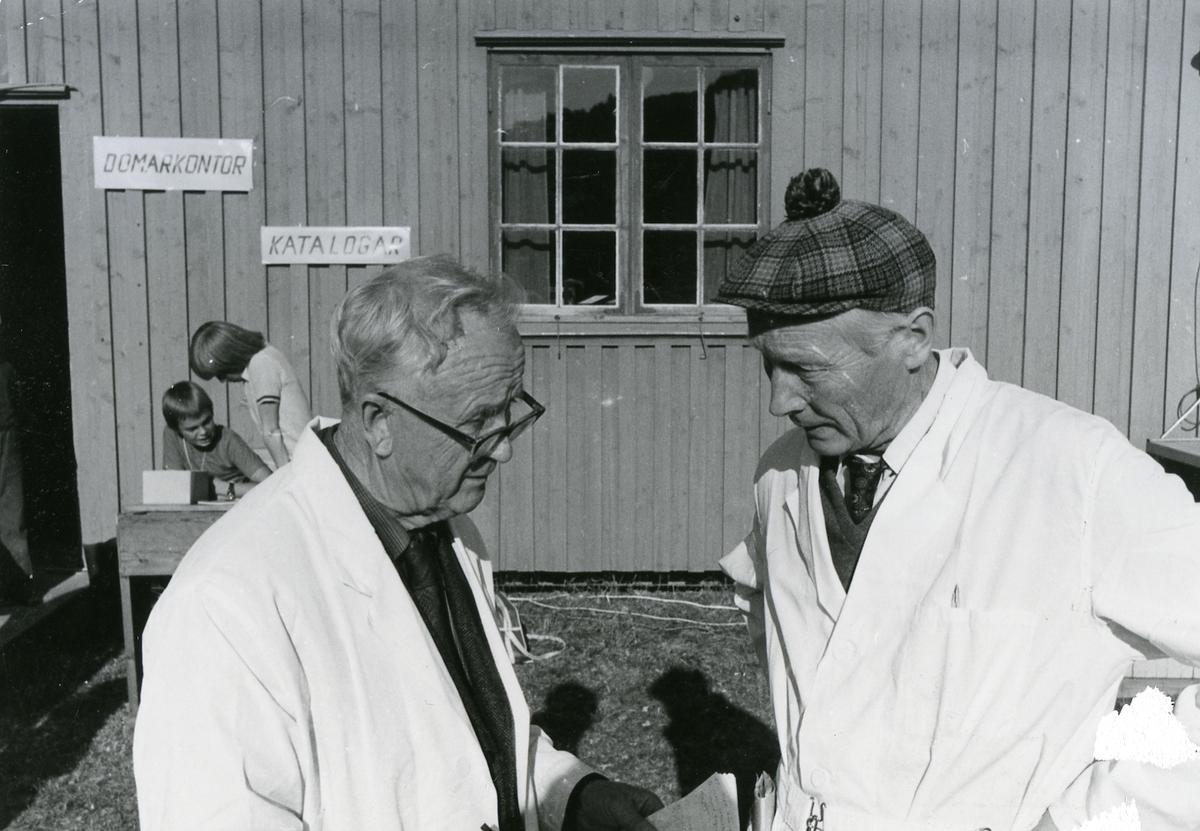 Sigbjørn Hobæk og Torvald Indrebø.